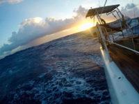 Solal - Océan Atlantique - Croisières - Ecole de voile - Cours de voile